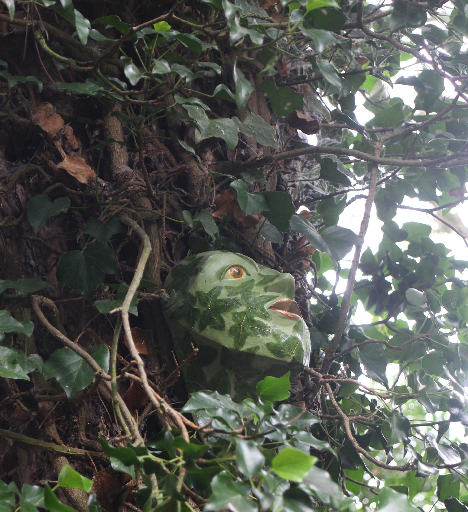 Ivy Ascending
